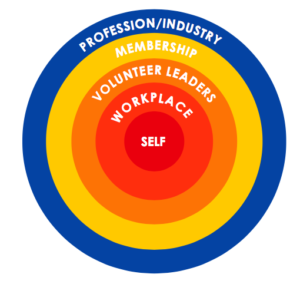 Concentric circles of diversity and inclusion work